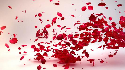 玫瑰花瓣飘过演绎婚庆婚礼 文字标题展示 ae模板14秒视频