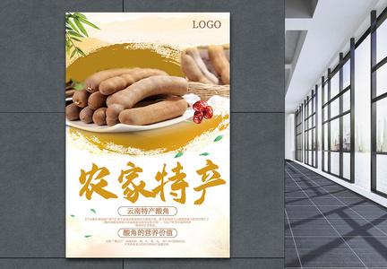 农家特产云南酸角海报图片