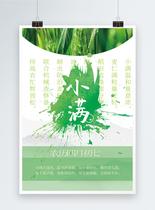 二十四节气之小满清新绿色创意海报图片