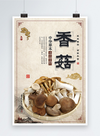 野生香菇美食海报