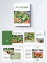 新鲜有机蔬菜画册整套图片