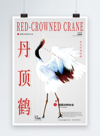 丹顶鹤动物保护公益海报