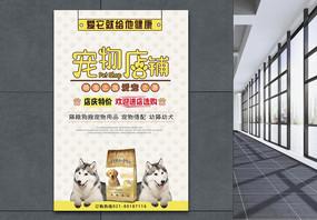 宠物店铺海报图片