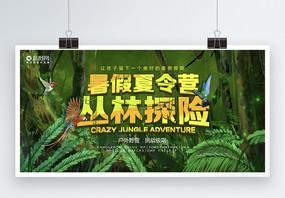 暑假夏令营丛林探险展板图片