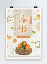 新鲜水果蜜桔海报图片