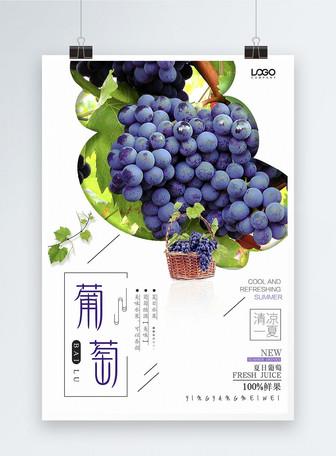 葡萄促销海报