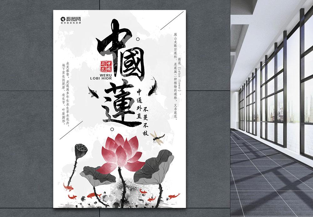 荷花中国莲海报图片