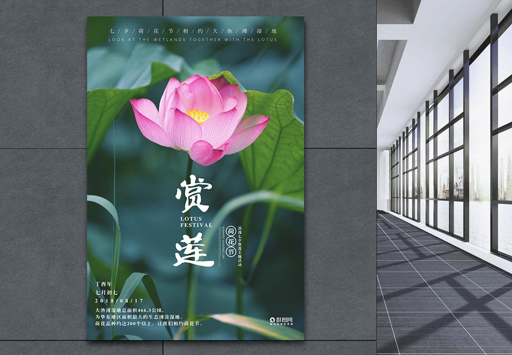 赏莲荷花海报图片