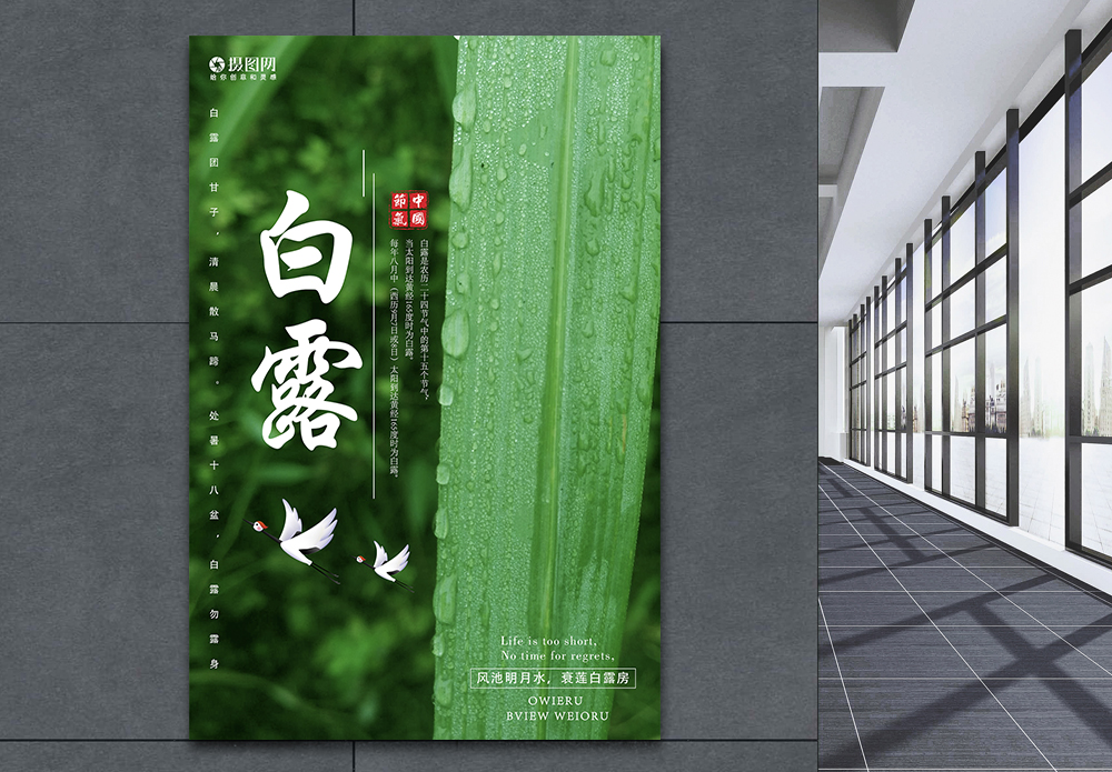 绿色清新白露节气海报图片