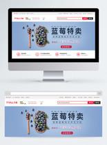 蓝莓淘宝banner设计图片