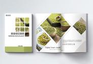 美食绿豆宣传画册整套图片