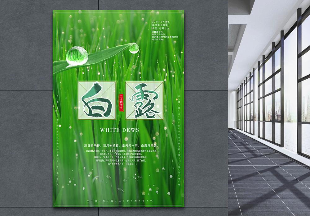 白露二十四节气海报图片