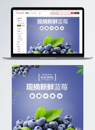 蓝莓水果详情描述PSD模板
