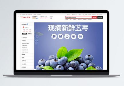 蓝莓水果详情描述PSD模板图片