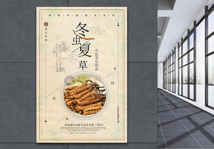 冬虫夏草养生食材海报图片