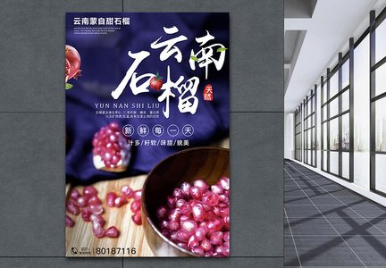 云南石榴水果海报图片