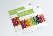 新鲜水果宣传画册封面图片