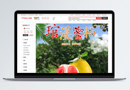 水果柚子淘宝详情页图片