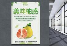 新鲜柚子促销海报图片