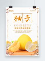 柚子海报设计图片