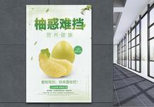 柚子促销海报图片