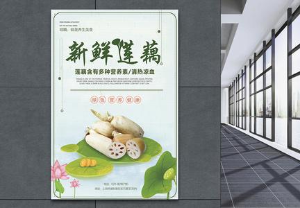 新鲜莲藕促销海报图片