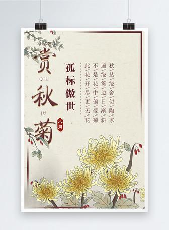 赏秋菊中国风花卉海报