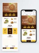 坚果小吃零食淘宝手机端模板图片