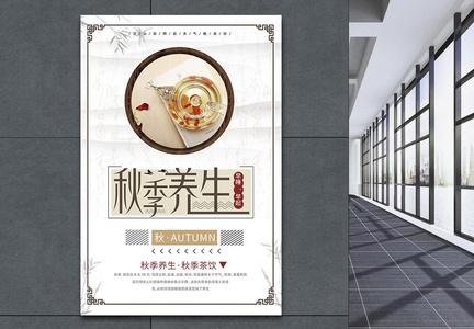 秋季养生花茶海报设计图片