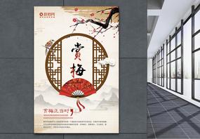 中国风赏梅海报图片