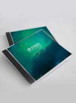 CD包装展示样机图片