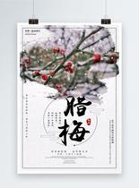 中国风腊梅海报图片