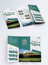 绿色简约旅行社行程介绍宣传三折页图片