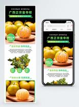 广西皇帝柑水果促销淘宝手机端模板图片