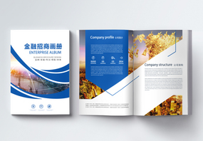 金融画册整套图片