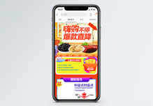 嗨购不停零食食品促销淘宝手机端模板图片
