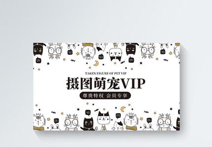 可爱简约宠物店会员vip会员卡模板图片