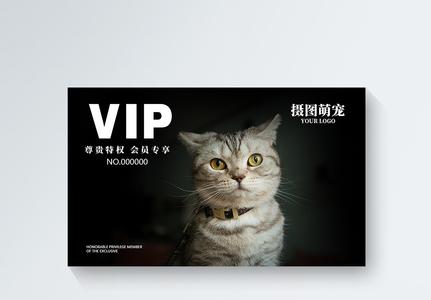 简约宠物店会员vip会员卡模板图片