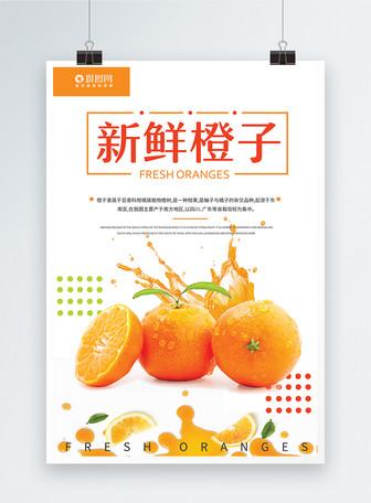 新鲜橙色橙子海报