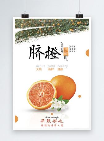 水果脐橙海报