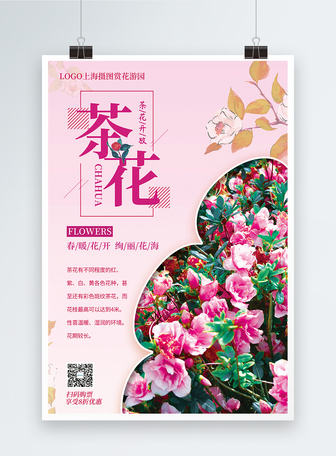 大气茶花春季赏花促销海报