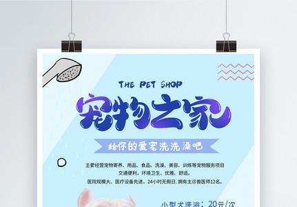 宠物之家促销海报图片
