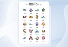 ui设计icon图标海洋生物图片
