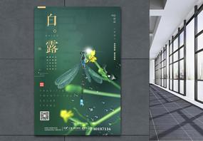 绿色清新植物白露绿色24节气海报图片
