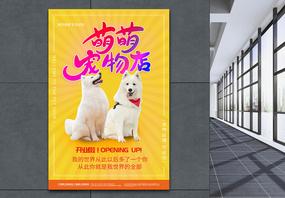 黄色宠物之家海报图片
