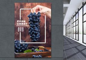 夏日水果云南黑提子海报图片
