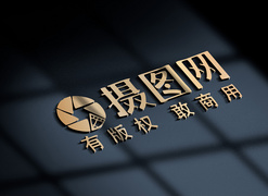 life日化商标logo样机