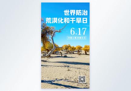 世界防治荒漠化和干旱日摄影图海报图片