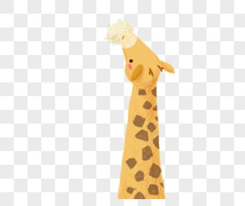 吃云彩的长颈鹿图片