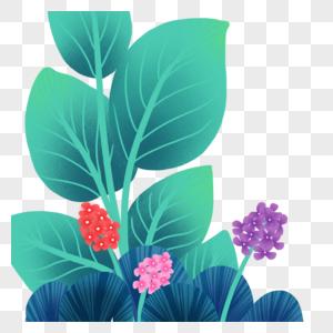 草丛 花丛高清图片